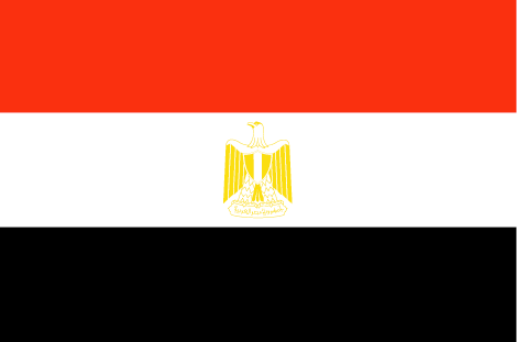 Egypt's Sisi and Belgian companies discuss green hydrogen
