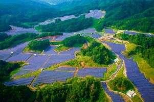 Univergy Solar enters Spanish hydrogen market with MW size plants